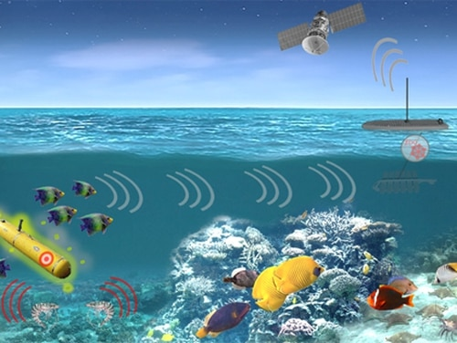 The Defense Advanced Research Projects Agency is launching the Persistent Aquatic Living Sensors program to gather the responses of living things to underwater vehicles and relay the information through a network of man-made hardware. (DARPA)