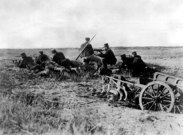 In this Aug. 1914 photo, a Belgian machine gun detachment sets up near Haelen, Belgium. The Belgians often used dogs to draw the ammunitions cart. The Battle of Haelen was also known as the Battle of the Silver Helmets. (AP)