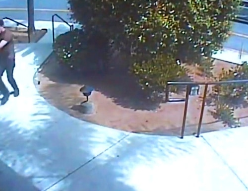 Surveillance footage from the April 27 shooting at a California synagogue was shown during Thursday's preliminary hearing of John T. Earnest, the suspected gunman in the rampage. (Chabad of Poway/San Diego Superior Court via AP)