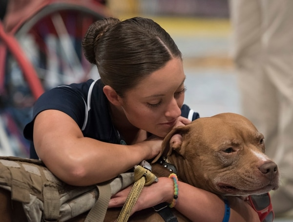 U.S. Army Sgt. Elizabeth Marks pets Bugsy, a U.S. Marine's service dog, after the US wheelchair basketball defeated UK in the gold medal match during Invictus Games 2016 at the ESPN Wide World of Sports complex at Walt Disney World, Orlando, Fla., May 12, 2016. The Invictus Games are the United Kingdom's version of the Warrior Games, bringing together wounded veterans from 14 nations for events including track and field, archery, wheelchair basketball, road cycling, indoor rowing, wheelchair rugby, swimming, sitting volleyball and a driving challenge. (DoD photo by Roger Wollenberg/Released)