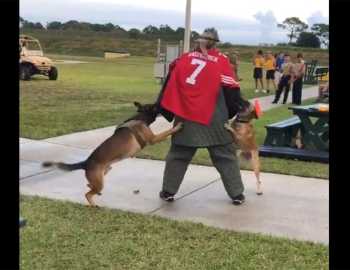 An image made from a video posted on Twitter shows a man wearing a Colin Kaepernick jersey during a K-9 demonstration at the Navy SEAL Museum in Florida. (image via Twitter)