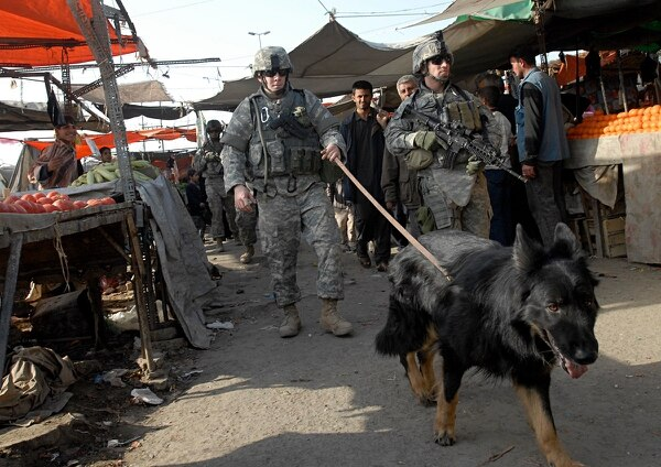 Air Force Senior Airman Adam La Barr, a military working dog handler, walks Frisco through the New Baghdad market to search for explosives while Army Staff Sgt. Shawn Legault provides security during a patrol in February 2007. (File)