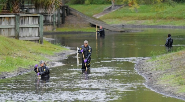 Law enforcement investigators in dry suits search the small retention pond near the entrance of the Southside Villas apartment complex off Southside Blvd. in Jacksonville, Florida, on Wednesday. (Bob Self/The Florida Times-Union via AP)