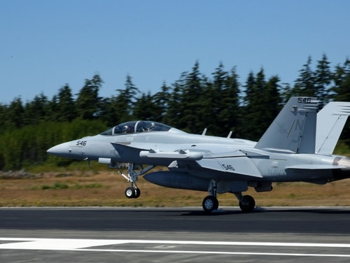 Lawmakers are asking why Navy officials did not share details of a harrowing physiological episode on a Growler jet during a House hearing about such problems that was held days after it happened. (MC2 John Hetherington/Navy)