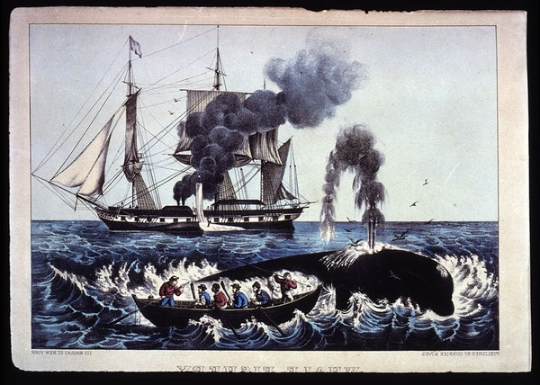 South Sea whale fishery, about 1835 (Library of Congress)