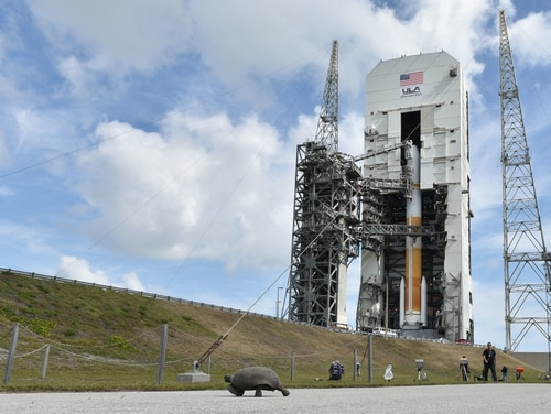 The United Launch Alliance prepares the Delta IV rocket Wideband Global SATCOM WGS-10 satellite at Cape Canaveral Air Force Station, Fla. Complex 37 on March 15, 2019. The Air Force expects to select a location to serve as Space Command's new headquarters in early 2021. (Airman 1st Class Dalton Williams/Air Force)