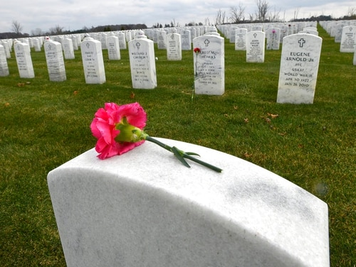 A lone pink carnation rests atop a headstone at the Great Lakes National Cemetery in Holly, Mich., on Monday, where the remains of 20 veterans discovered at Cantrel Funeral Home in Detroit will be interred. (Dale G.Young /Detroit News via AP)