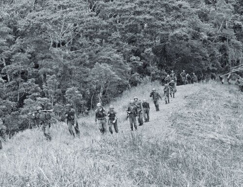 Local guides accompany the 2nd Raiders as they pursue Japanese forces across Guadalcanal in November 1942.