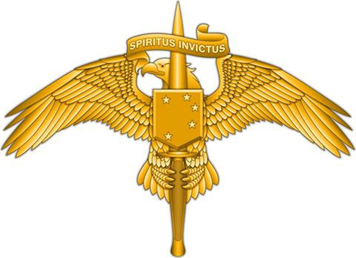 Marine Raiders will soon wear this special insignia on ...
