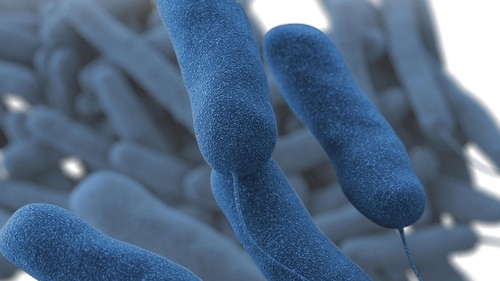 High levels of Legionella bacteria force two areas of Landstuhl Regional Medical Center to close down for decontamination. (Centers for Disease Control)