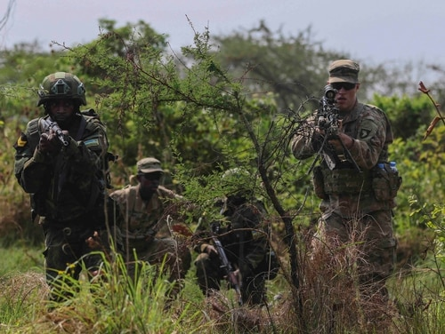 American officials train in Africa with local forces during a U.S.-sponsored exercise in 2019. (Sgt. Heather Doppke/U.S. Army)