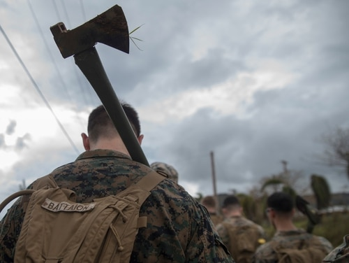 Marines and sailors from 2nd Battalion, 5th Marines and Combat Logistics Battalion 31 clear debris Thursday on Rota, part of the Commonwealth of the Northern Mariana Islands. (Cpl. Bernadette Plouffe/Marine Corps)