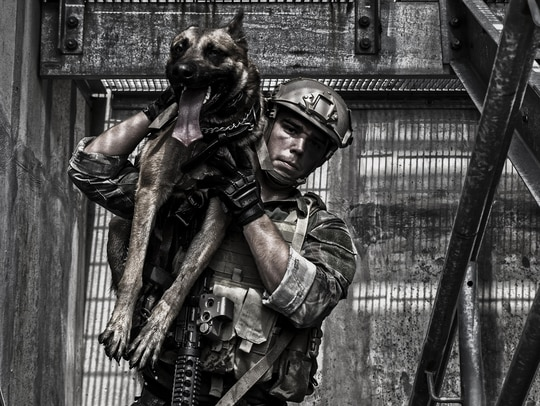 A multipurpose canine handler with Marine Corps Forces Special Operations Command carries his canine up a grated ladderwell during training aboard Stone Bay at Camp Lejeune, North Carolina, Sept. 16, 2014. (Sgt. Scott A. Achtemeier/Marine Corps)