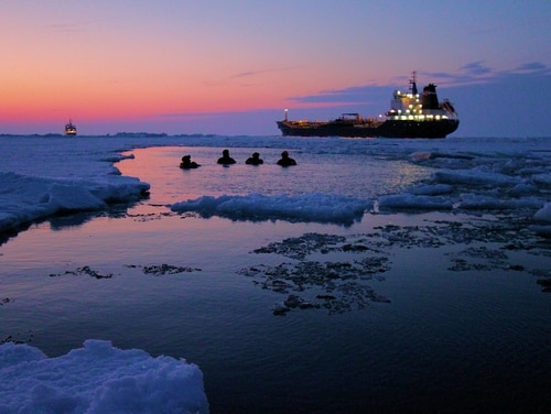 Crewmembers from the Coast Guard Cutter Bristol Bay take a dip in Lake Erie at sunset with the Canadian Coast Guard Ship Griffon and the motor vessel Algoma Hansa in the background, March 8, 2015. (Chief Petty Officer Nick Gould/Coast Guard)