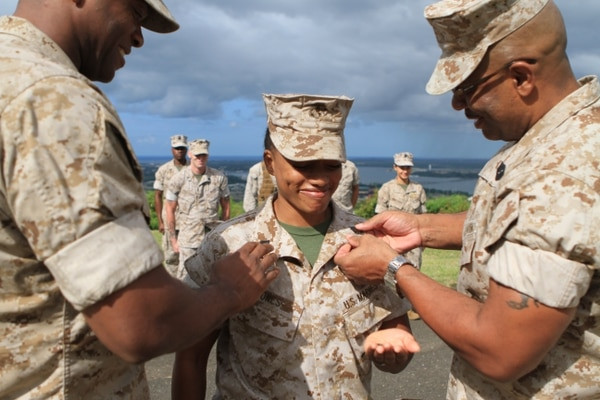 Making gunny: Promotion outlook looks favorable for ...