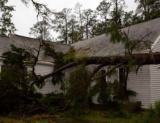 A tree collapsed on the Paradise Point houses during Hurricane Florence on Marine Corps Base Camp Lejeune, North Carolina, Sept. 15, 2018. (Lance Cpl. Isaiah Gomez/Marine Corps)