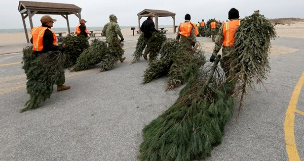 In this Wednesday, Jan. 17, 2018 photo, sailors volunteer to shore up the sand dunes with recycled Christmas trees at the enlisted beach at Joint Expeditionary Base Little Creek, in Virginia Beach, Va. (Steve Earley/The Virginian-Pilot via AP)