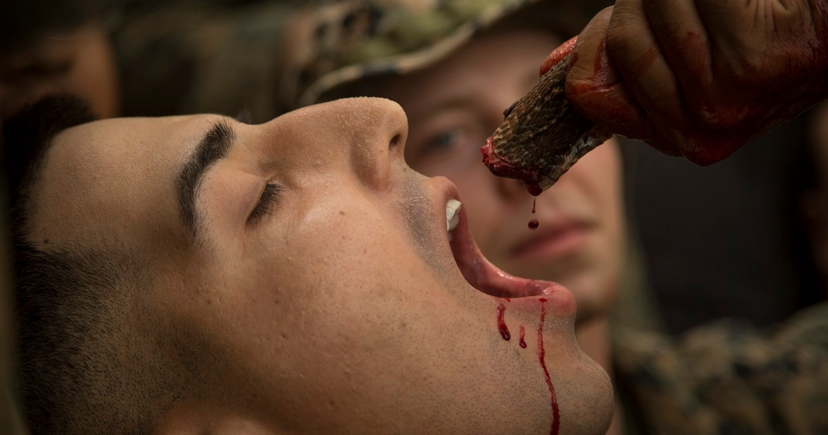 PETA demands Marines stop drinking cobra blood, eating live animals