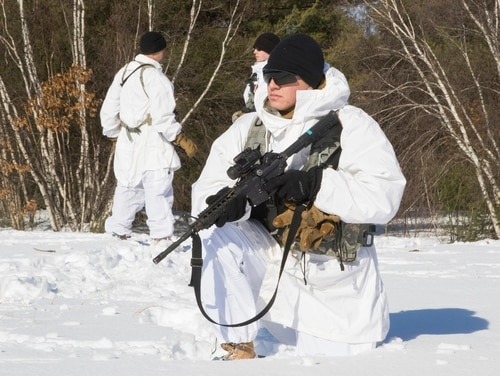 A recent symposium on cold weather and mountain warfare training at Fort Drum, N.Y., brings U.S. and foreign units with expertise together to collaborate and improve training, gear and preparation for a cold weather fight. (Army)