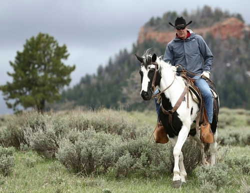 In this May 9, 2017, file photo, Interior Secretary Ryan Zinke rides in the Bears Ears National Monument with local and state representatives in Blanding, Utah. (Scott G Winterton/The Deseret News via AP)