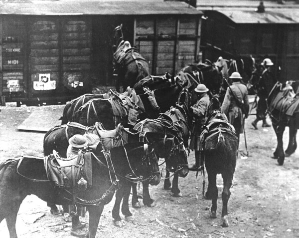 In this March 7, 1918 file photo, men of U.S. Battery E, 5th Field Artillery Battalion, 1st Infantry Division, load horses onto freight cars in Toul, eastern France, en route to the front. (AP)