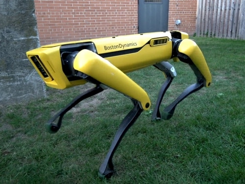 SpotMini is a small four-legged robot that weighs 25 kg, is all-electric and can go for about 90 minutes on a charge, depending on what it is doing. (Boston Dynamics)