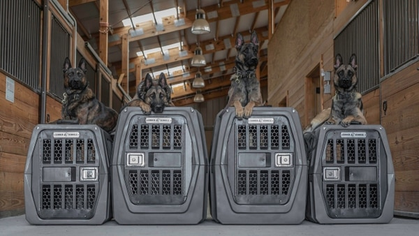 Gunner Kennels makes one of the strongest canine carriers in the world — a perfect match for these durable dogs. (Photo from Gunner Kennels)