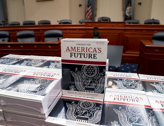 Copies of the White House's fiscal 2021 budget proposal sit on display on Capitol Hill on Feb. 10, 2020. (J. Scott Applewhite/AP)