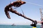 Treasure hunter vows legal showdown over Blackbeard shipwreck