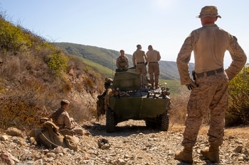 Investigation opened into Marine Corps, Army training deaths