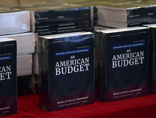 The White House's FY19 Budget is on display after arriving on Capitol Hill on Feb. 12, 2018. On Tuesday, a key House panel backed Trump's plans for another big boost for the Department of Veterans Affairs budget next year. (Susan Walsh/AP)