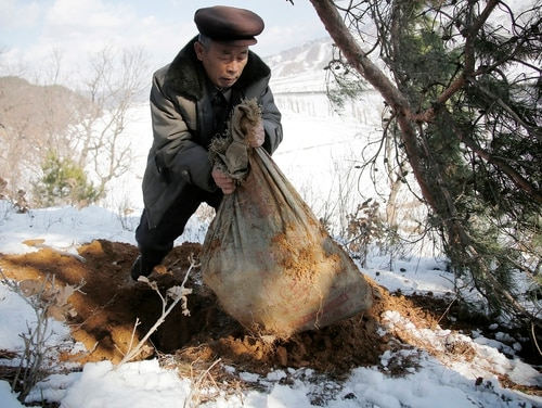 In this Thursday, Dec. 3, 2015, photo, village elder Kim Ri Jun digs up a burlap sack which he claims contains the remains belonging to a soldier who fought in the Korean War from a burial site on Ryongyon-ri hill in Kujang county, North Korea.
