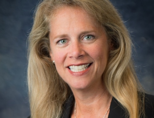 Karin Soyster Fitzgerald is the newly appointed Chief Operating Officer at the United States Geospatial Intelligence Foundation. The organization's mission is to provide a forum to exchange ideas, share best practices, and promote the education and importance of a national intelligence agenda. (Courtesy USGIF)