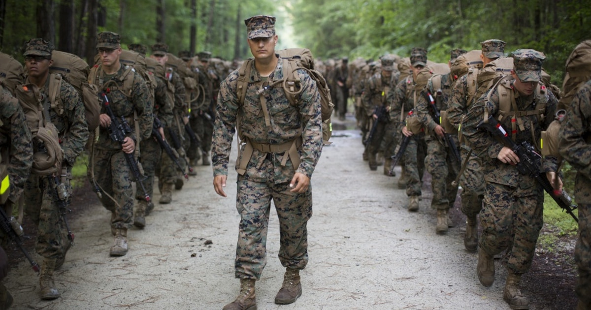 Marines Will Now Wear Woodland Green Camouflage Uniforms