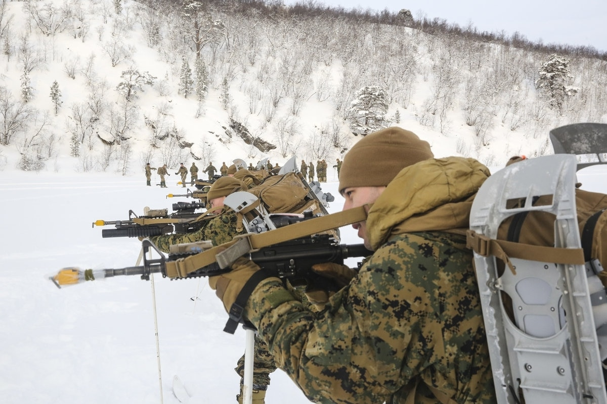 Image result for u.s. marines, norway