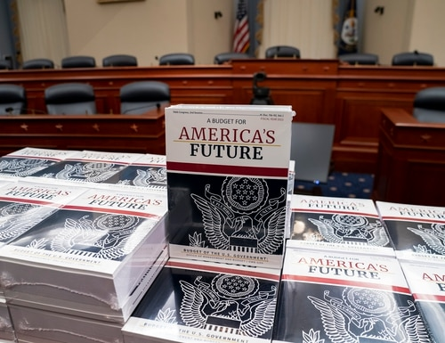 Copies of the white House's proposed fiscal 2021 federal budget were displayed on Capitol Hill in February. (J. Scott Applewhite/AP)