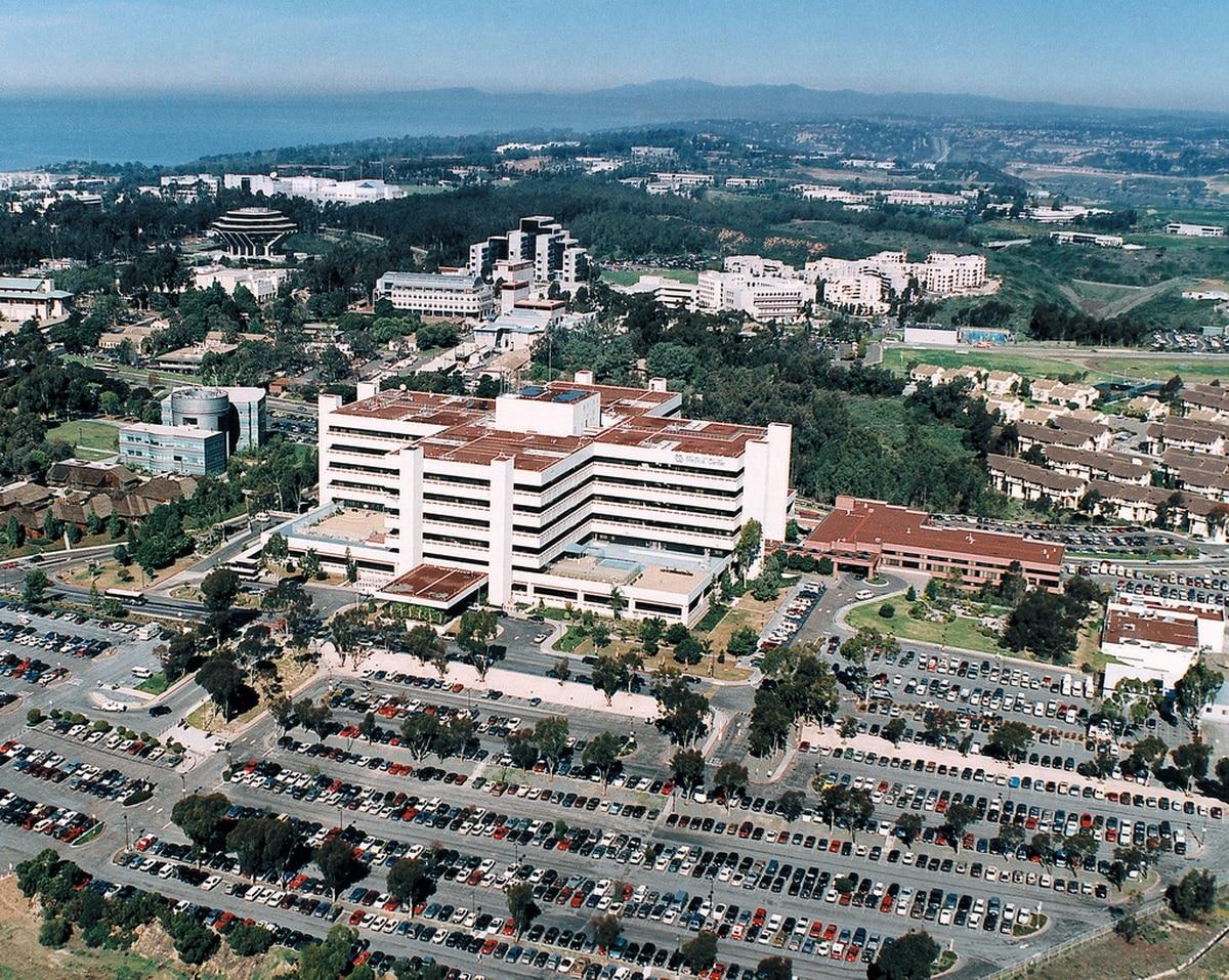 Report Va San Diego Failed To Monitor Treat Veteran