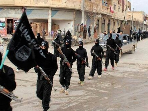 A Georgia woman has been taken into custody and charged with helping ISIS carry out cyber attacks on Americans. (AP)