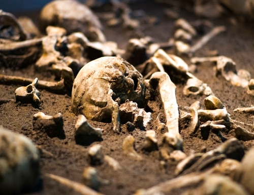 The Sept. 20, 2018 photo shows human skulls and bones of the battle of Tollensetal about 1250 BC. displayed at an archeological exhibition at the Martin-Gropius-Bau museum in Berlin. The new exhibition showcasing more than 1,000 major archaeological finds from the past 20 years shows reveals how Germany has been at the heart of European trade, migration, conflict and innovation since the Stone Age. The exhibition runs until Jan. 6, 2019. (Markus Schreiber/AP)