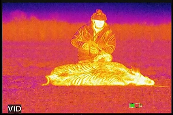 Thermal images using the ATN Thor 30mm. There are 10 color palettes you can choose from.