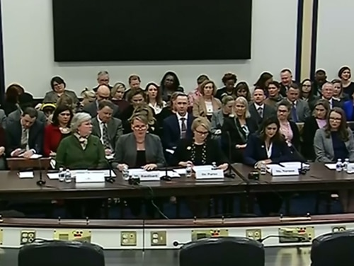 From left: Kelly Hruska, National Military Family Association; Karen Ruedisueli, Military Officers Association of America; Becky Porter, Military Child Education Coalition; Navy wife Michelle Norman and Army wife Austin Carrigg testify before lawmakers about problems with the Exceptional Family Member Program. (Image via Defense.gov video)