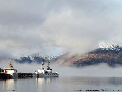 The Coast Guard cutters SPAR and Douglas Munro are moored while a raft of otters gather in Womens Bay, in Kodiak, Alaska, on May 1. (Chief Petty Officer Charly Hengen/Coast Guard)