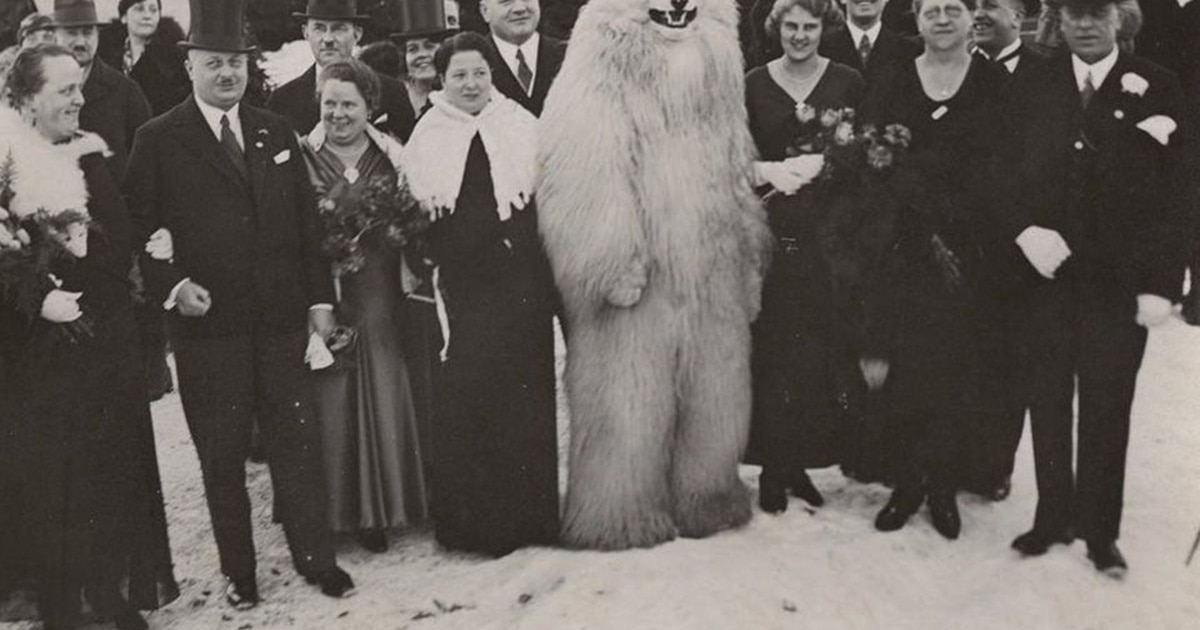 Book highlights WWII Germany's bizarre's obsession with posing with polar bear mascots