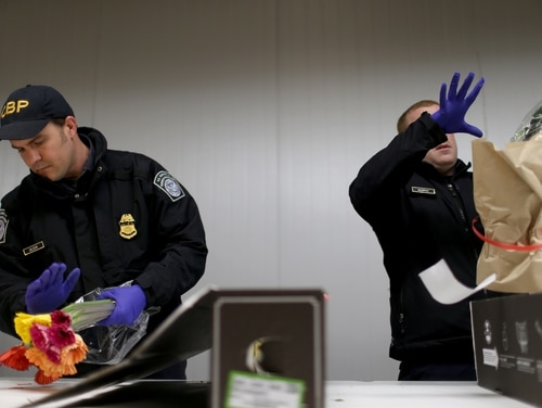 MIAMI, FL - FEBRUARY 10: U.S. Customs and Border Protection Agriculture Specialists inspect flowers for foreign pests or diseases in the LAN Cargo center at Miami International Airport February 10, 2015 in Miami, Florida. As Valentine's Day approaches Miami International Airport sees their daily flower shipments quadruple to 22 million flowers per day. During the rest of the year MIA handles more than 90 percent of all flowers imported to the U.S. Most of the flowers come from South American growers. (Photo by Joe Raedle/Getty Images)