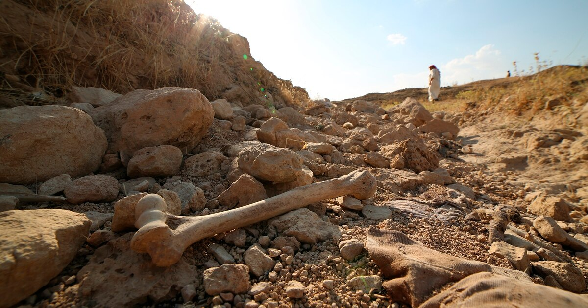 Mass grave uncovered in former ISIS territory of northern Iraq