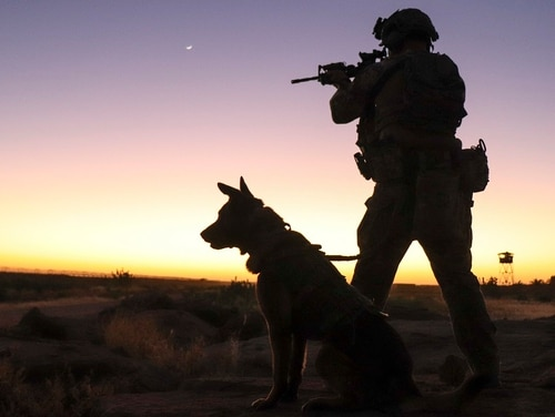 Senior Airman Cullen Thomas, a military working dog handler with the 824th Expeditionary Base Defense Squadron, and his dog, Klepa, perform a perimeter check at Nigérien Air Base 201, Niger, Dec. 9. (Staff Sgt. Daniel Asselta/Air Base)
