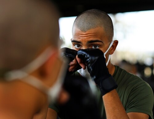 Recruits with Lima Company, 3rd Recruit Training Battalion, practice martial arts techniques aboard Marine Corps Recruit Depot Parris Island, South Carolina, Nov. 6. (Lance Cpl. Samuel Fletcher/Marine Corps)