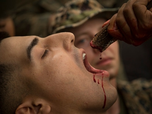 A U.S. Marine with Alpha Company, Battalion Landing Team, 1st Battalion, 5th Marine Regiment, drinks the blood of a king cobra during jungle survival training as part of exercise Cobra Gold 2020 at Ban Chan Khrem, Chanthaburi, Kingdom of Thailand, March 2. (Staff Sgt. Jordan E. Gilbert/Marine Corps)