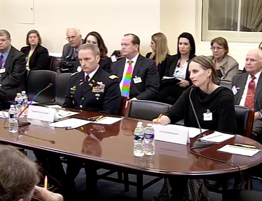 Army Col. Scott Gerber and Air Force wife Linne Gherdovich testified March 3 about the conditions of their privatized housing and their suggestions for improvements. (Via House Appropriations subcommittee on military construction, veterans affairs and related agencies / YouTube)